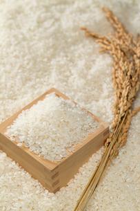 米と升と稲穂の写真素材 [FYI01627116]