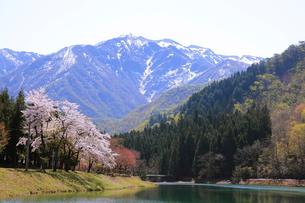 残雪の粟ヶ岳の写真素材 [FYI01627255]