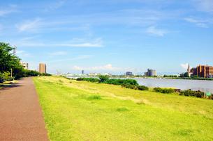 信濃川と河川敷の写真素材 [FYI01627449]