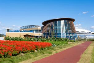 新潟市食育・花育センターとサルビアの花畑の写真素材 [FYI01627473]