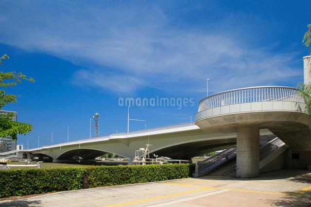 信濃川に架かる柳都大橋の写真素材 [FYI01627475]
