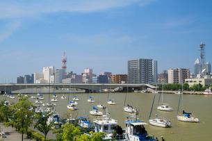 信濃川に架かる柳都大橋とヨットの写真素材 [FYI01627480]