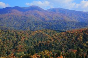 秋の山岳風景の写真素材 [FYI01627631]