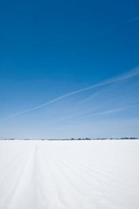 雪原の写真素材 [FYI01627698]