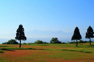 山本山高原より越後三山を望むの写真素材 [FYI01627855]