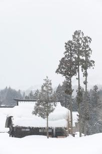 雪の中の民家の写真素材 [FYI01627875]