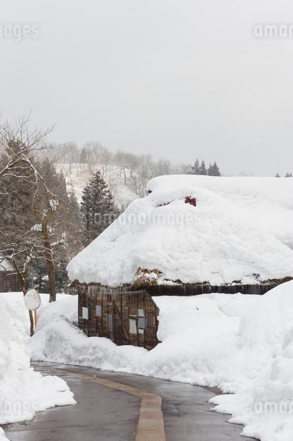 雪の中の民家と道路の写真素材 [FYI01627888]