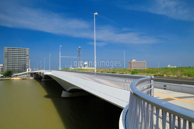 柳都大橋と信濃川の写真素材 [FYI01627937]