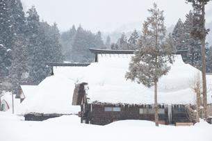雪の中の民家の写真素材 [FYI01627966]