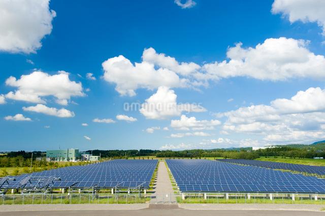 ソーラーパネルの写真素材 [FYI01628046]