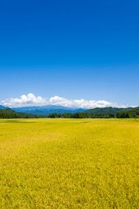 秋の田園風景と山並みの写真素材 [FYI01628064]