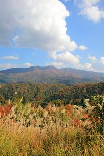 すすきと紅葉の守門岳の写真素材 [FYI01628092]