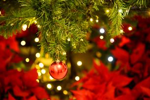 クリスマスツリーの飾りの写真素材 [FYI01628104]