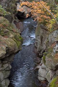 秋の磊々峡の写真素材 [FYI01628137]