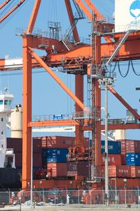 ガントリークレーンと貨物船の写真素材 [FYI01628151]