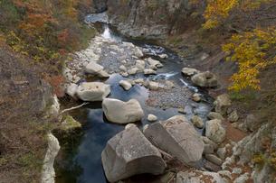 秋の磊々峡の写真素材 [FYI01628232]
