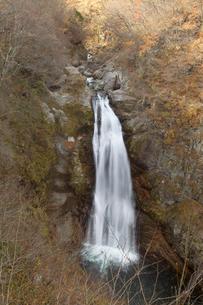 晩秋の秋保大滝の写真素材 [FYI01628290]