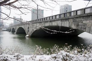 冬の萬代橋の写真素材 [FYI01628316]