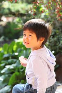 縁側で梨を食べる男の子の写真素材 [FYI01628396]