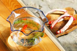 金魚鉢の写真素材 [FYI01628455]