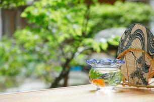 縁側に金魚鉢と団扇の写真素材 [FYI01628482]