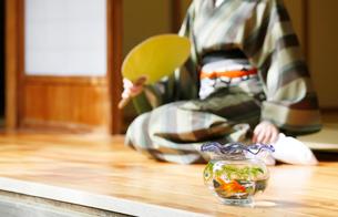 縁側の金魚鉢と和服の女性の写真素材 [FYI01628525]