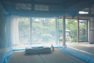 和室に蚊帳の写真素材 [FYI01629277]