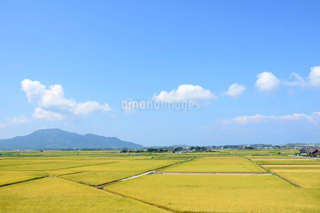 秋の田園風景と山並みの写真素材 [FYI01629278]