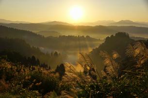 朝もやに包まれた山並みとススキの写真素材 [FYI01629367]