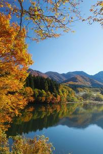 秋の大源太キャニオンの写真素材 [FYI01629459]