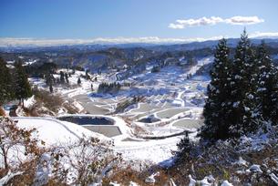 雪の棚田と山並みの写真素材 [FYI01629484]