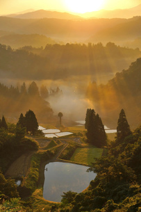 朝もやに包まれた棚田と山並みの写真素材 [FYI01629571]