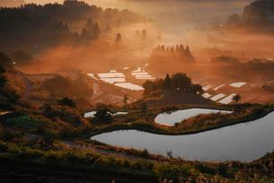 朝日射す稲刈り後の棚田の写真素材 [FYI01629671]