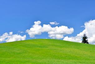 丘と青空と雲の写真素材 [FYI01629727]