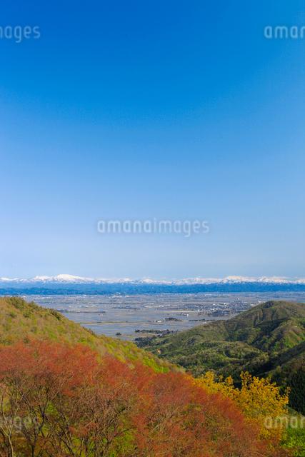 弥彦山より春の田園風景の写真素材 [FYI01629729]