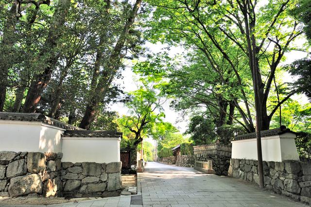 穴太積の石垣が続く坂本の街並の写真素材 [FYI01629882]