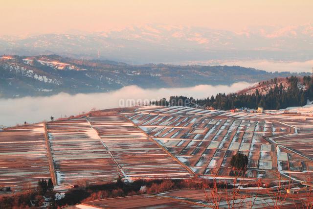 朝もやと田園風景の写真素材 [FYI01629928]
