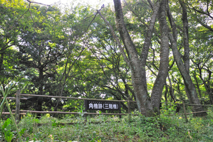 佐倉城角櫓跡(三階櫓)の写真素材 [FYI01629950]