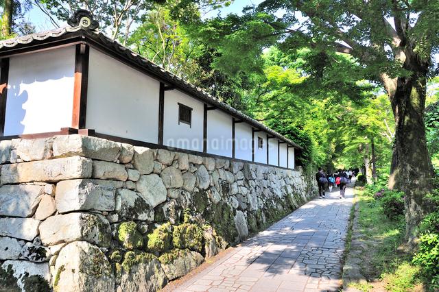 穴太積の石垣が続く坂本の街並の写真素材 [FYI01629956]