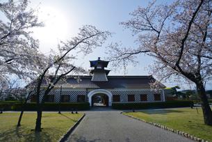 新潟市郷土資料館と桜の写真素材 [FYI01630016]