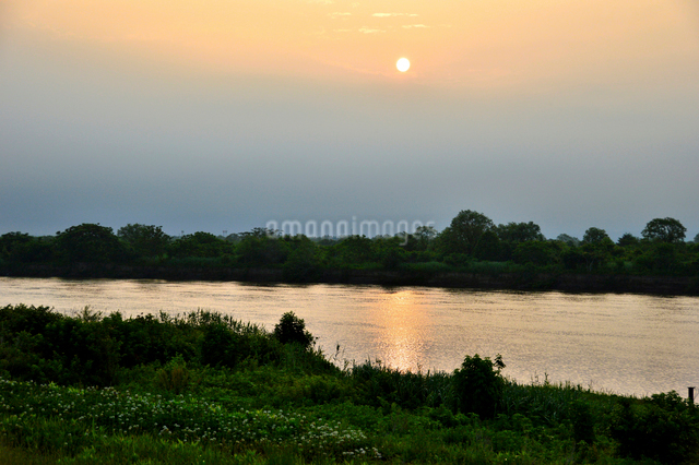 信濃川の朝の写真素材 [FYI01630057]