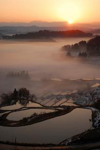 朝もやに包まれた棚田棚池と朝日の写真素材 [FYI01630142]