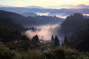 棚田と朝もやの写真素材 [FYI01630181]