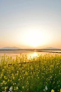 夕日に染まる田園風景の写真素材 [FYI01630308]