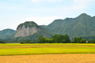 八木ヶ鼻と秋の田園風景の写真素材 [FYI01630559]