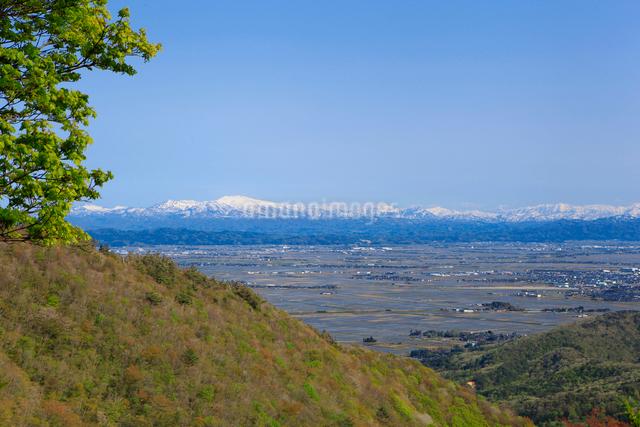 弥彦山より春の田園風景の写真素材 [FYI01630577]