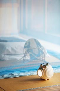 和室に蚊帳の写真素材 [FYI01630592]