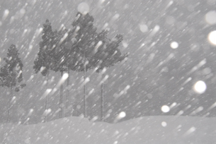 吹雪の風景の写真素材 [FYI01630634]