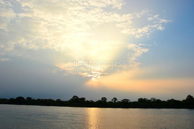 信濃川の朝の写真素材 [FYI01630656]