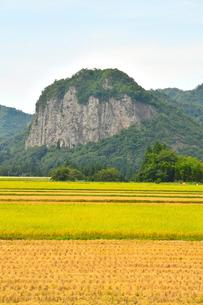 八木ヶ鼻と秋の田園風景の写真素材 [FYI01630810]